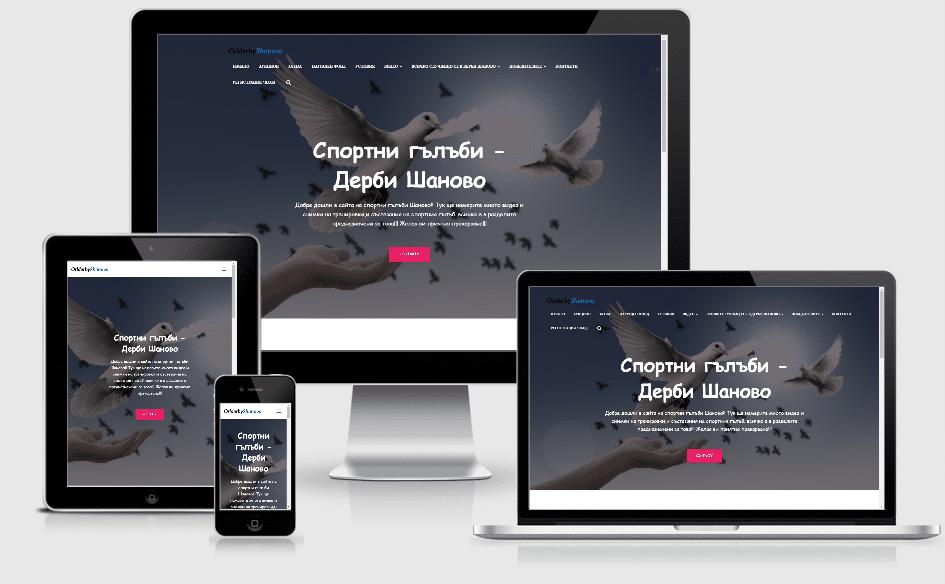 Уебсайт на ORL Derby Shanovo